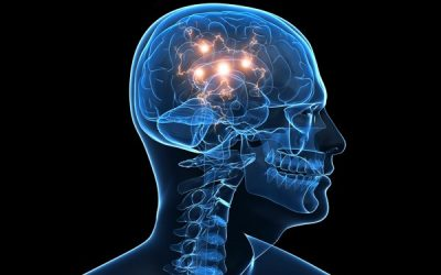 What Is Neuropsychology?